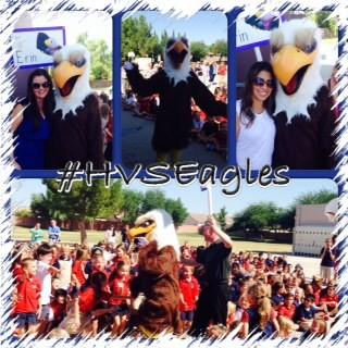 HVS Eagle